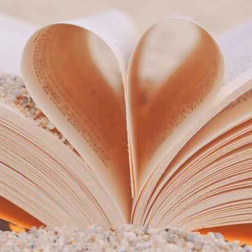 cropped-blur-book-close-up-356353.jpg